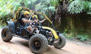 Taotao ATVs – Conquer Powerful Terrains With You in Tow