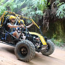 Taotao ATVs - Conquer Tough Terrains With You in Tow